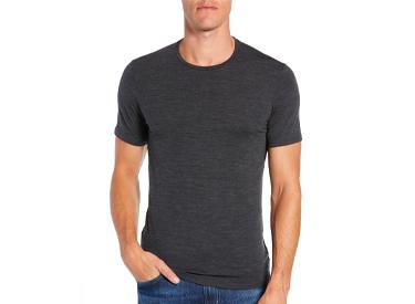 Anatomica Short Sleeve Crewneck T-Shirt ICEBREAKER.