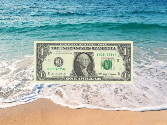 dollar bill with ocean