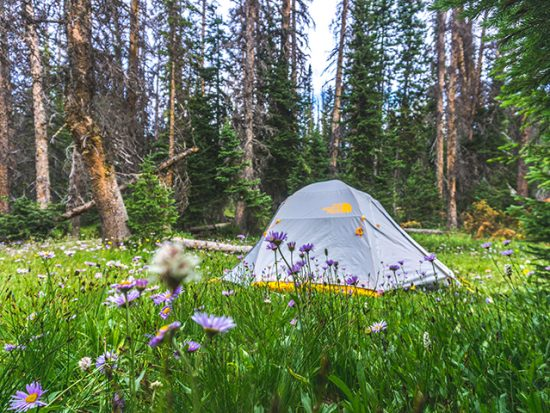 Frequently Asked Questions About Camping