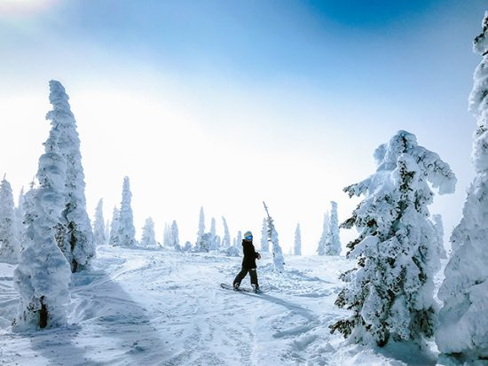 Person Snowboarding in Snowy Forest