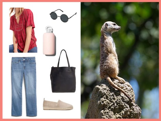 What to Wear Nashville Zoo, Women's Outfit