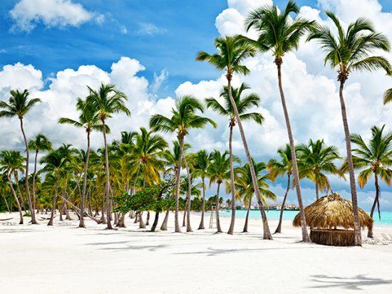 Punta Cana Dominican Republic Beach