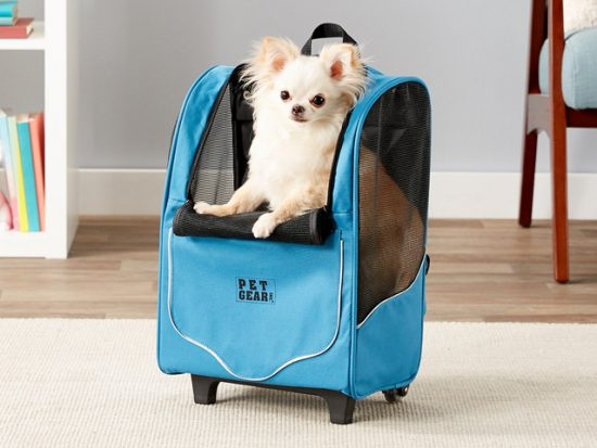 Pet Gear I-GO2 Sport, Misty Blue.