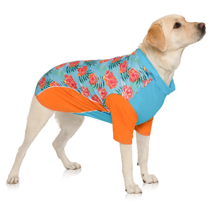 PlayaPup Dog Sun Shirt (UPF 50+), Tropical Floral Blue.