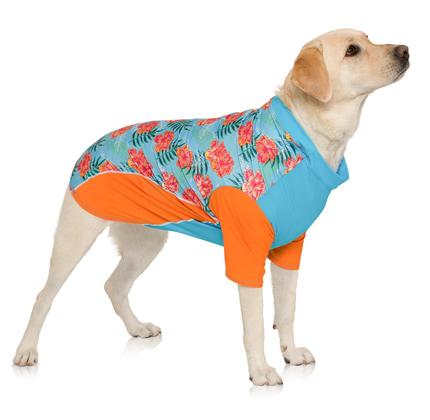 PlayaPup Dog Sun Shirt (UPF 50+), Tropical Floral Blue.