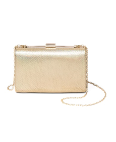 Target Estee & Lilly Metallic Rectangle Minaudiere Clutch.