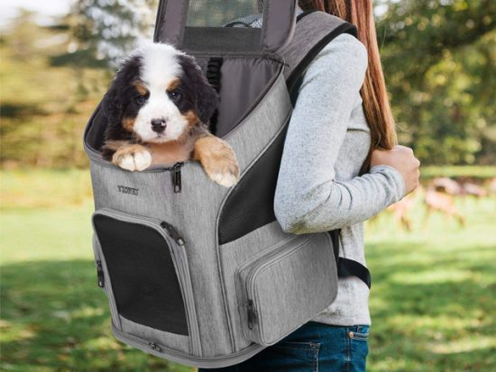 Ytonet Dog Backpack.