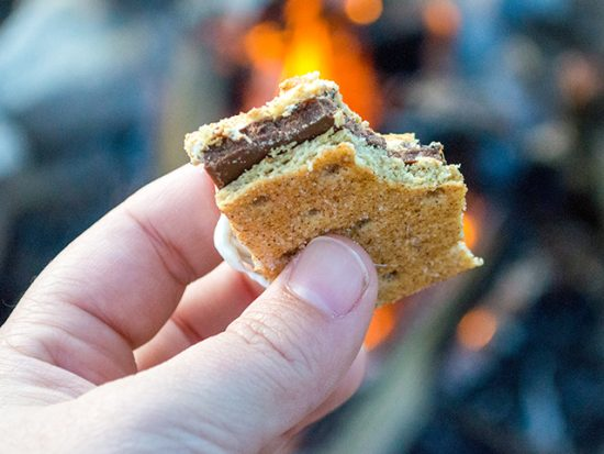Man holding a smores in front of a camp fire.