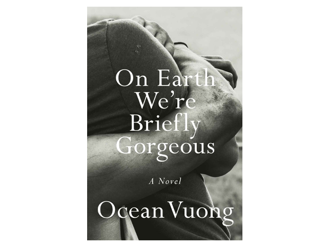 On Earth We're Briefly Gorgeous: A Novel.
