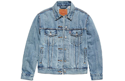 Free People Levi's Ex-Boyfriend Trucker Denim Jacket.