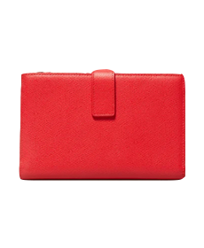The Traveler Wallet by Everlane